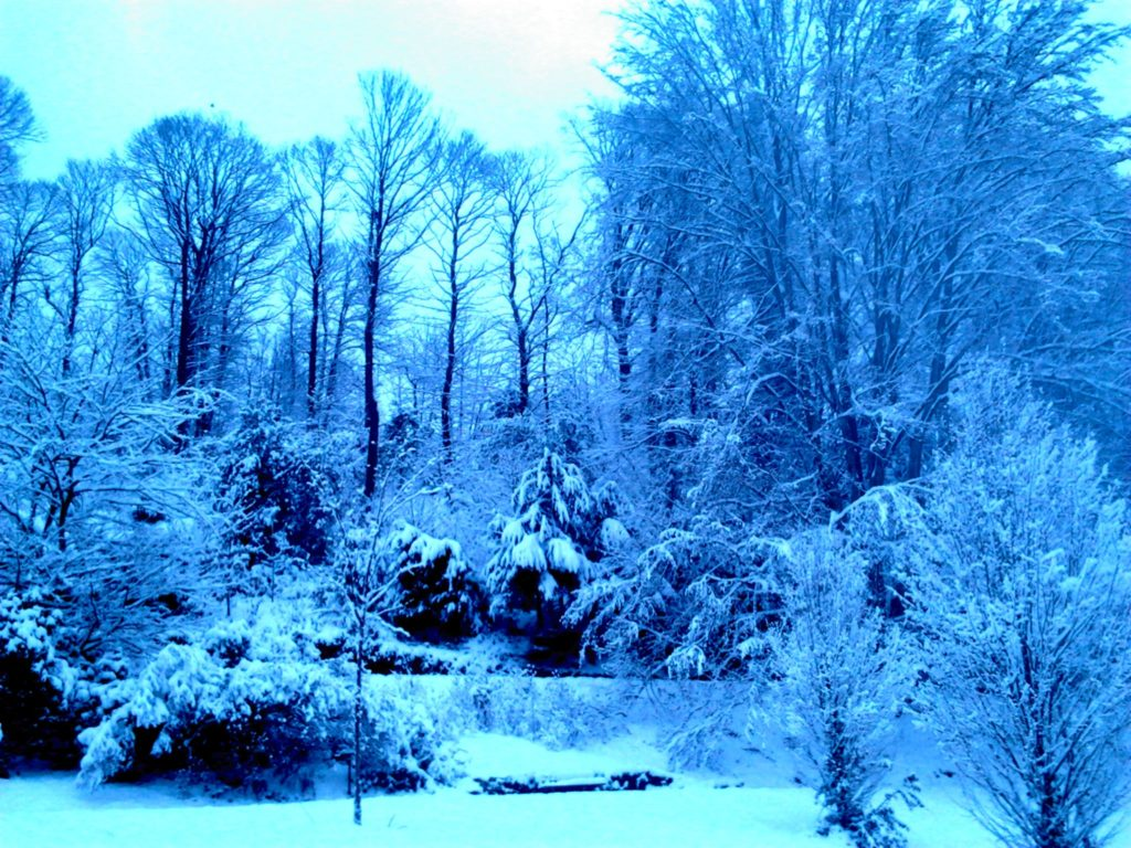 Winterbläue edited